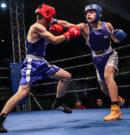 Me vendim të FboxK me 1  qershor fillojnë stervitjet e klubeve të boksit